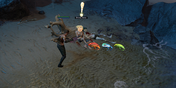 02275 Path Of Exile: The Performance Of All This Beauty Will Not Affect